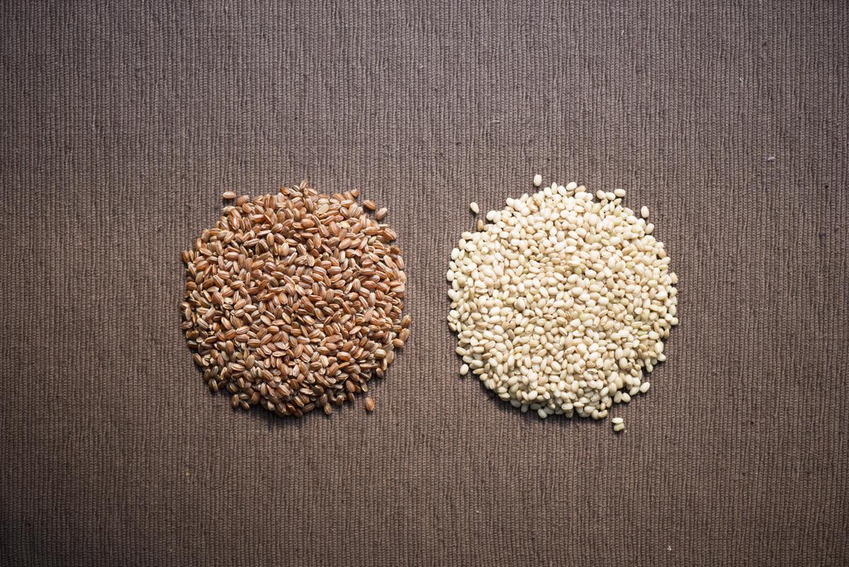 古代米とは?