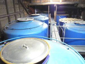 西堀酒造 仕込み蔵内 貯蔵タンク